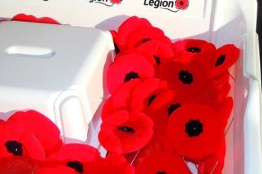 donate poppies